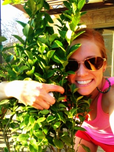 Yes I'm hugging a tree. and that paper towel in my hand kept my finger from bleeding due to a sharp bud on this tree.